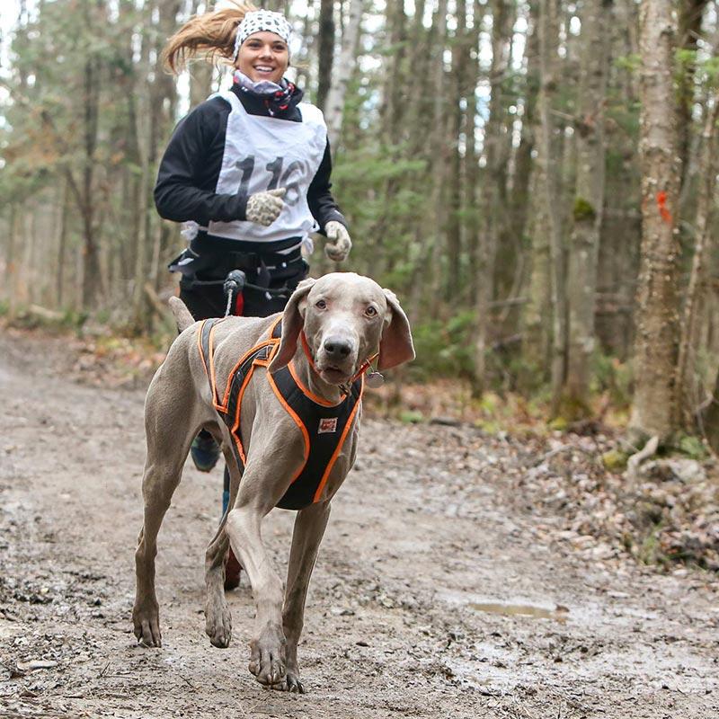 Amilie Marois | Vita DogTeam | Vita Nutrition Animale – www.vitanutrition.ca