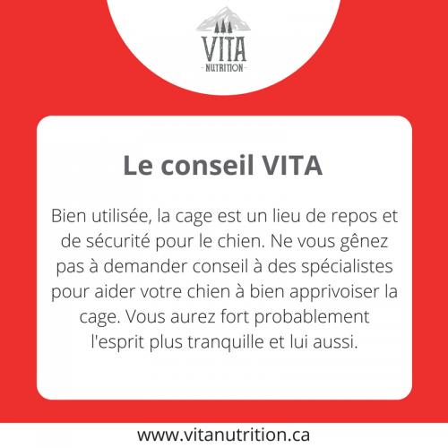 La cage, un bon allié | Le Conseil Vita | Vita Nutrition Animale - www.vitanutrition.ca