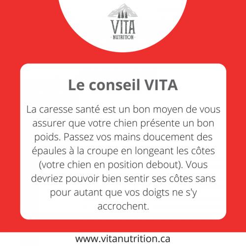 La caresse santé | Le Conseil Vita | Vita Nutrition Animale - www.vitanutrition.ca