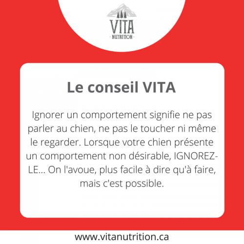 Ignorer les comportements non désirables | Le Conseil Vita | Vita Nutrition Animale - www.vitanutrition.ca