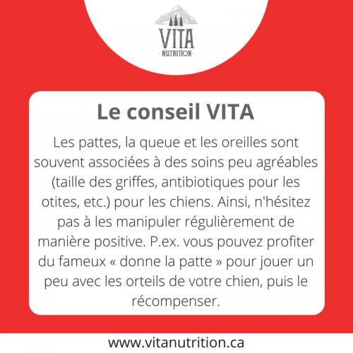 Manipuler son chien | Le Conseil Vita | Vita Nutrition Animale - www.vitanutrition.ca