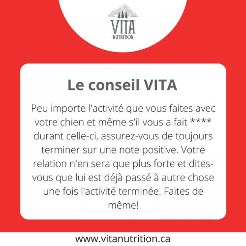 Terminer sur une note positive | Le Conseil Vita | Vita Nutrition Animale - www.vitanutrition.ca
