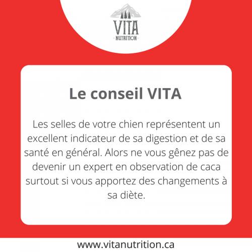 Les selles | Le Conseil Vita | Vita Nutrition Animale - www.vitanutrition.ca