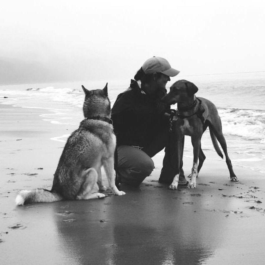 Chelsea-Knox-et-Harlow | Vita DogTeam | Vita Nutrition Animale - www.vitanutrition.ca